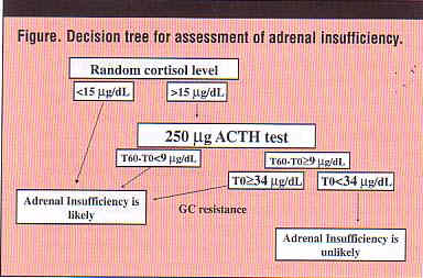adrenal disorders and critical illness-related corticosteroid, Skeleton