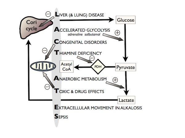 Npj aging and mechanisms of disease   nature